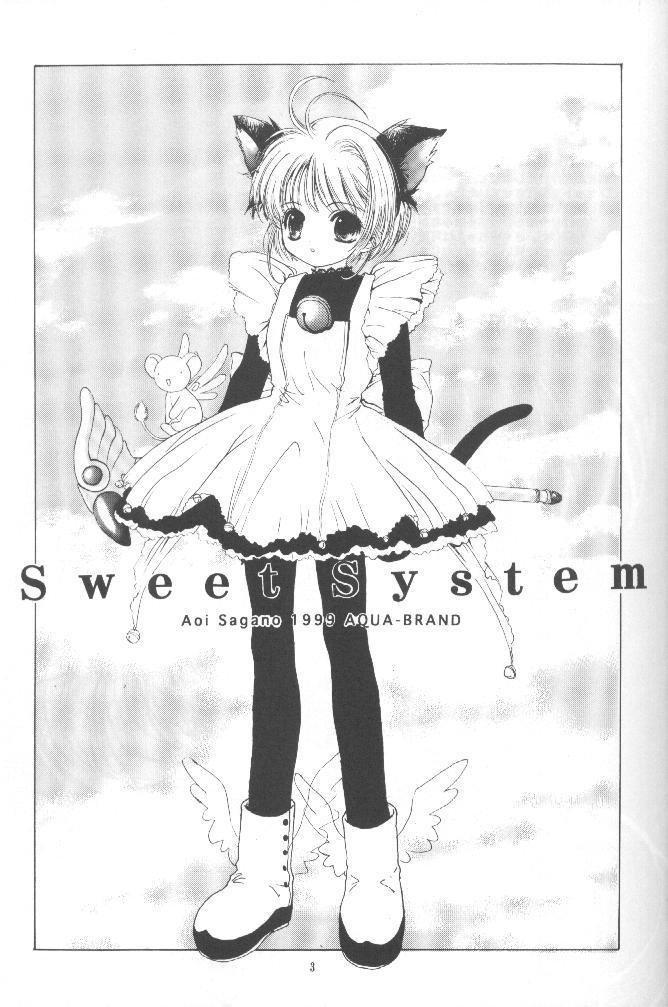 Sewwt System 1
