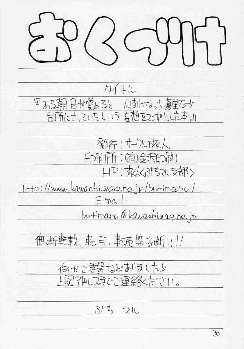 Aru Asa Me ga Sametara, Ningen ni Natta Souseiseki ga Daidokoro ni Tatte ita to Iu Mousou wo Manga ni Shita Hon. 28