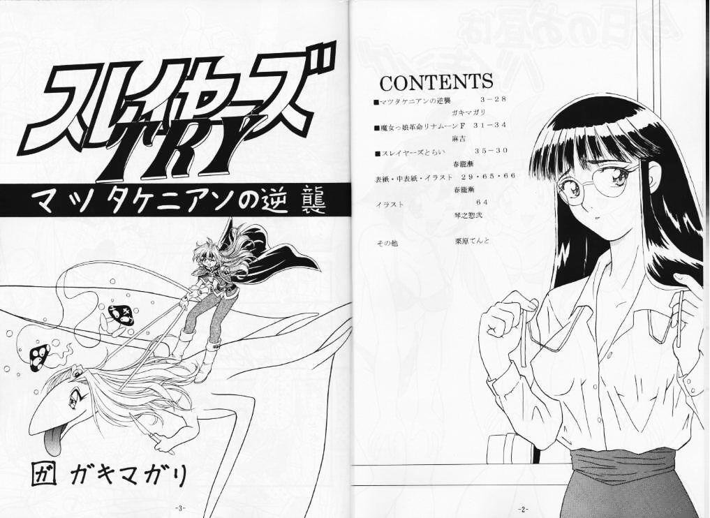 Kyou no Ohiru wa Viking Kanzenban 2