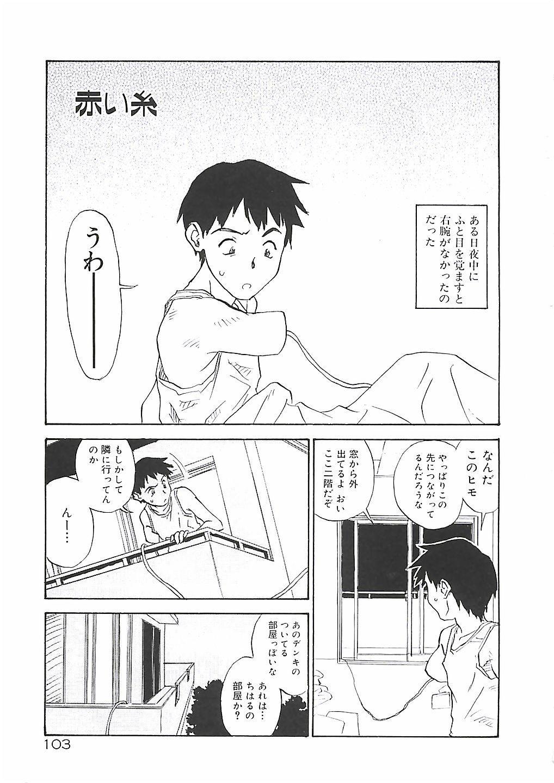 Himawari 102