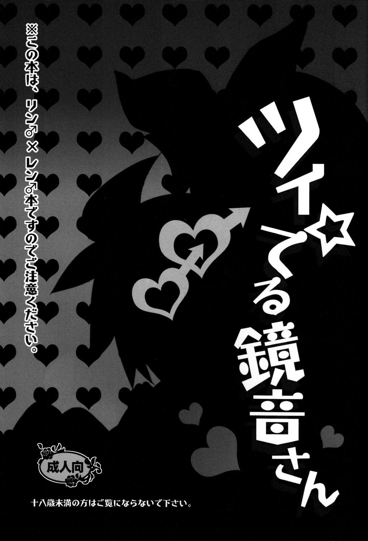 Tsui Teru Kagamine-san 1