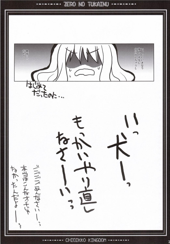 Zero no Tsukainu 19