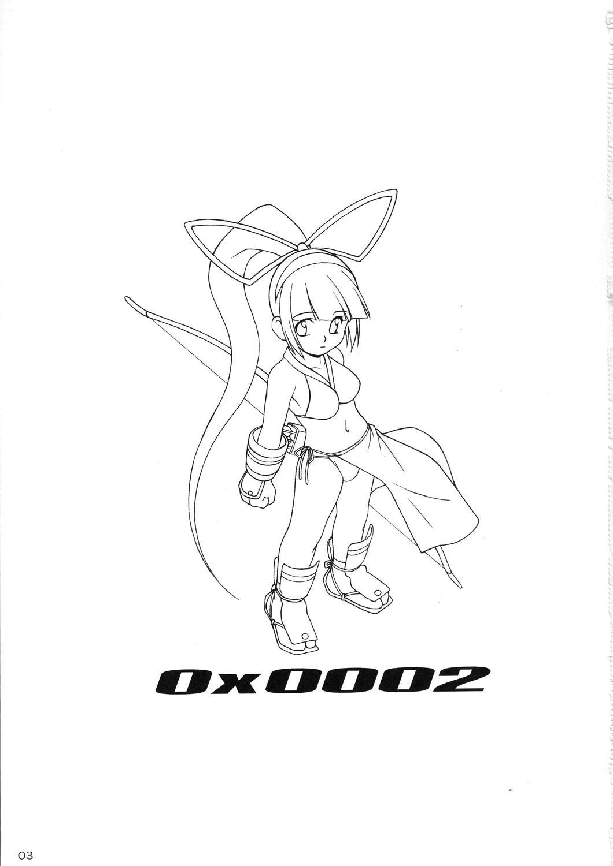 Zero X 0x0002 1