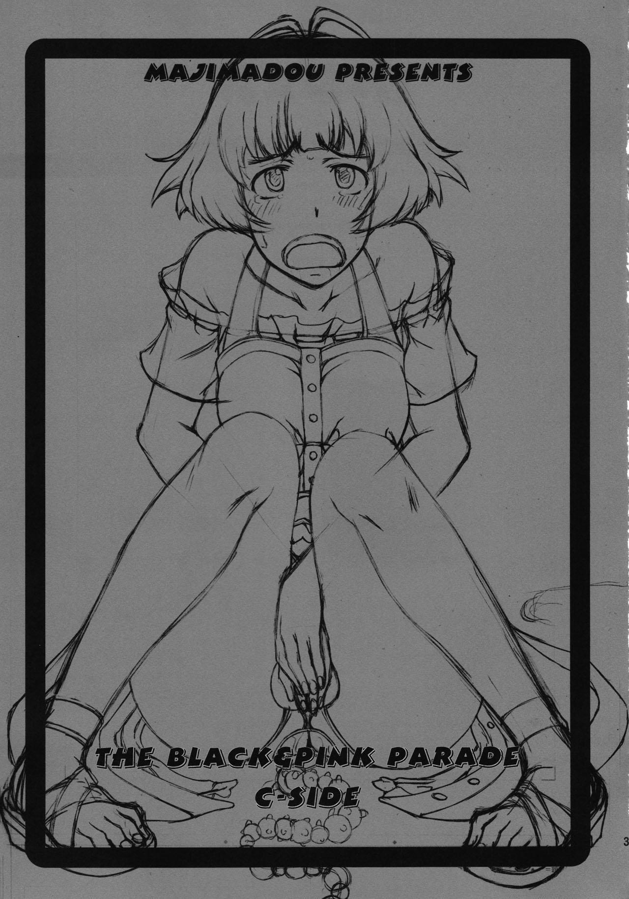 THE BLACK & PINK PARADE C-SIDE 2