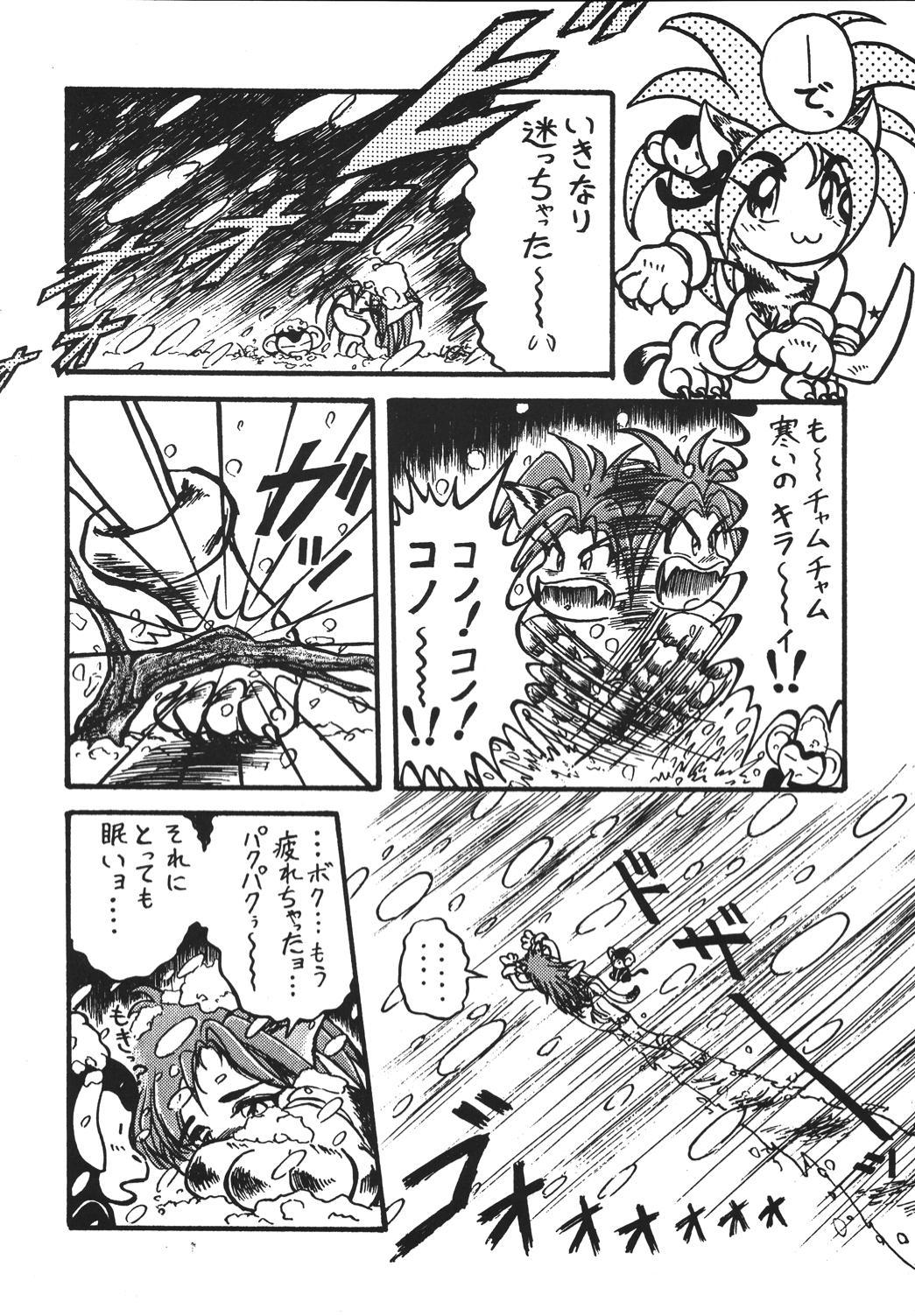 Shinkon 96