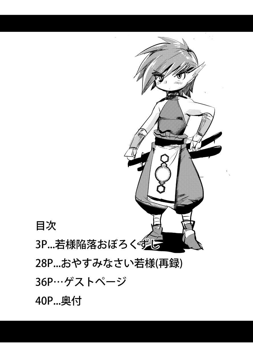 Wakasama Kanraku Oboro Kuzushi 2