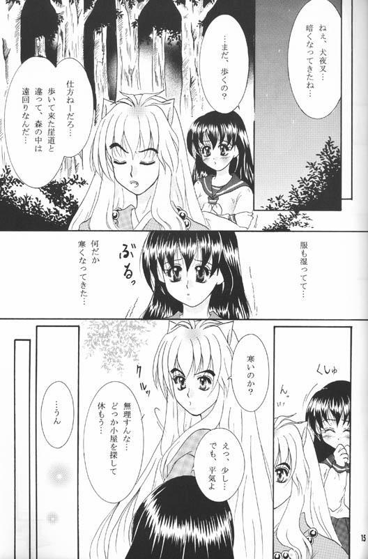 Secret of Forest 12