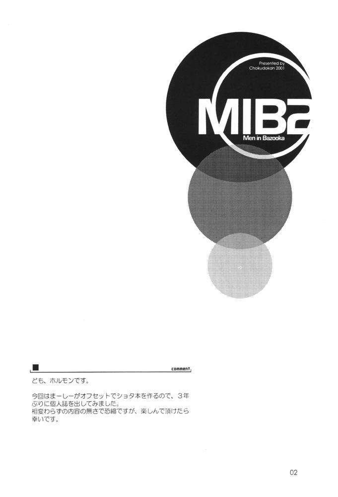 MIB 2 2