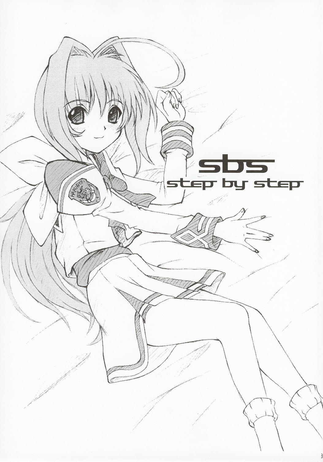 SBS step by step 1