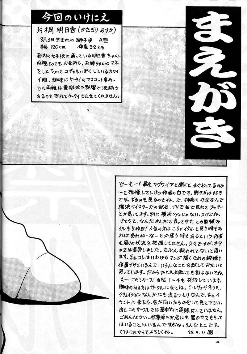 Bishoujo Kankin File 5 3